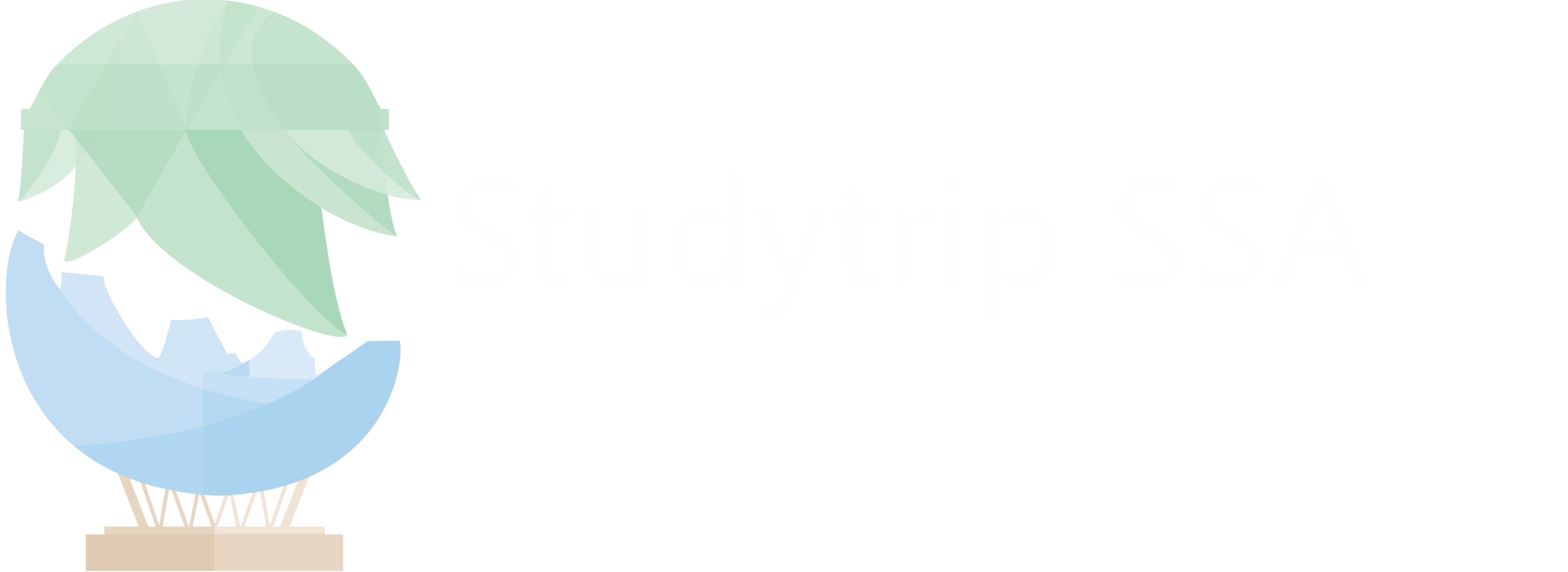 Studytrip SSA